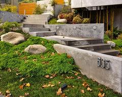Entry Steps contemporary-landscape