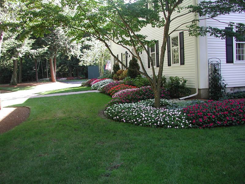 Estate Landscape Maintenace