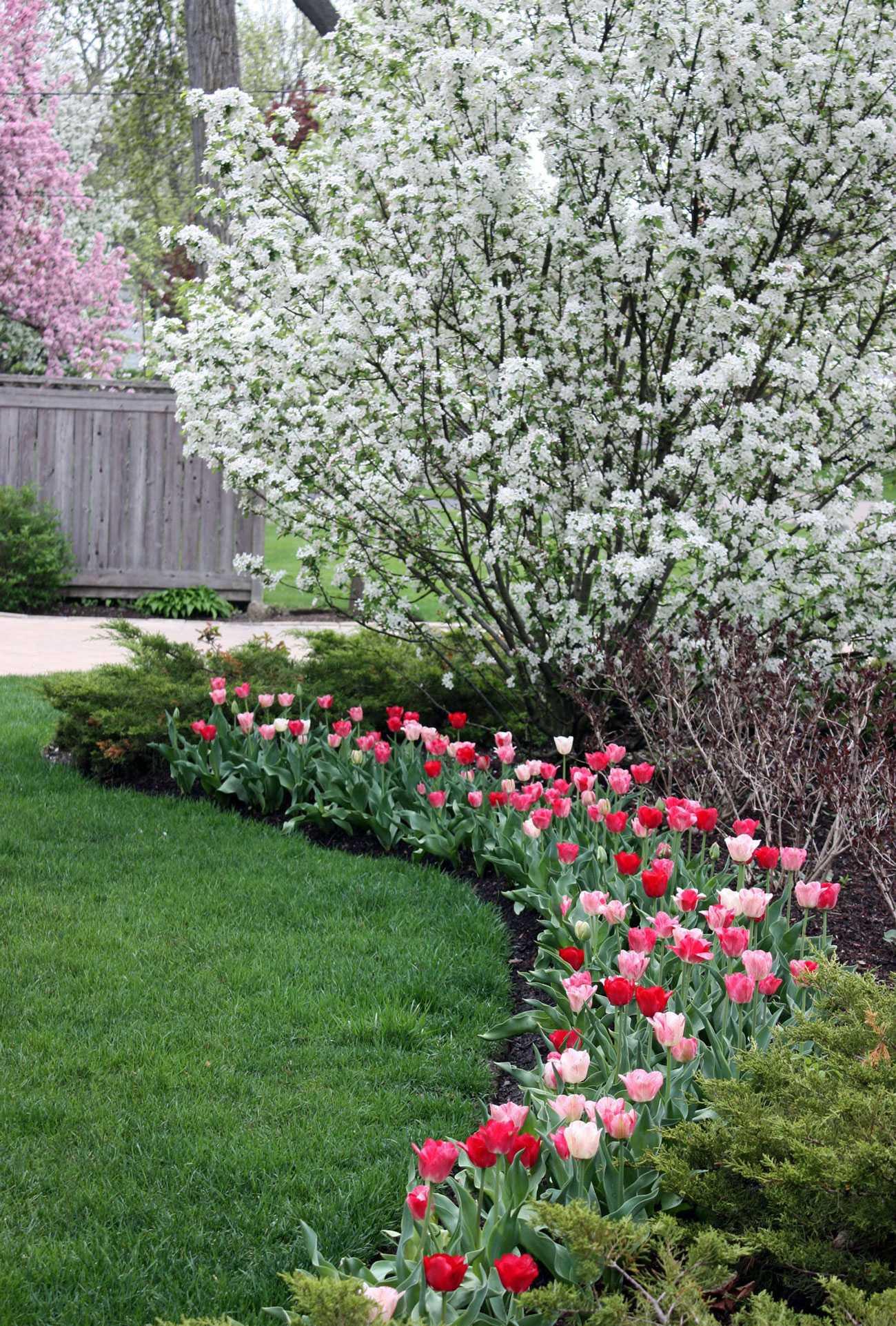 Estate Landscape Maintenance