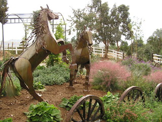 Evanson Horses mediterranean-landscape