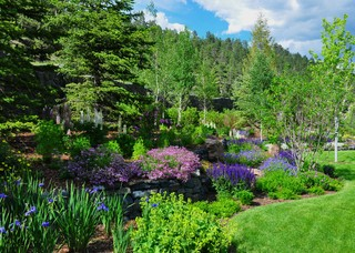 Evergreen Mountain Retreat Traditional Landscape