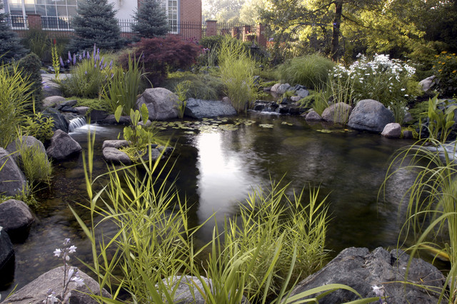 Evoke Koi Pond Traditional Landscape Chicago By Kane Brothers Water Features
