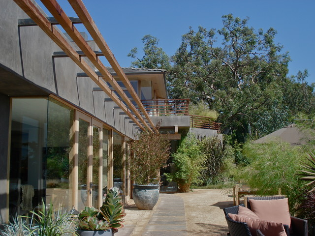 Exterior views from rear contemporary-landscape