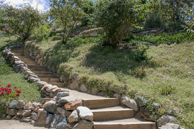 Design ideas for a rustic landscaping in San Diego.