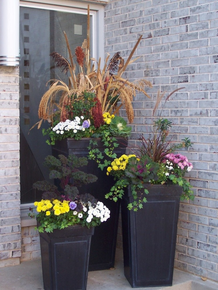 This is an example of a mid-sized contemporary full sun front yard landscaping in Chicago for fall.