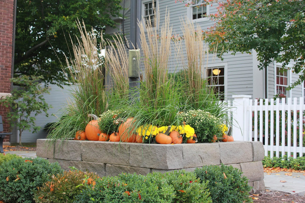 Photo of a mid-sized traditional full sun backyard retaining wall landscape in Other for fall.