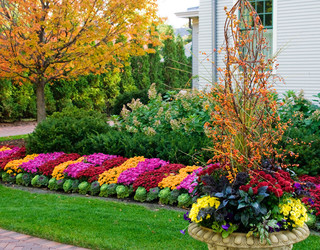 fall flower beds contemporary landscape other by. Black Bedroom Furniture Sets. Home Design Ideas