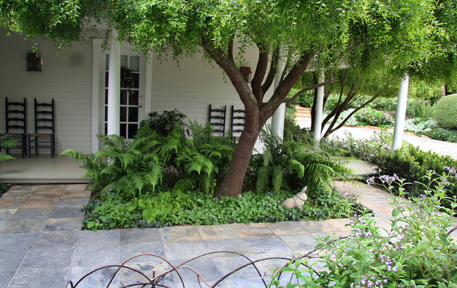 Fern Planter at Front traditional-landscape