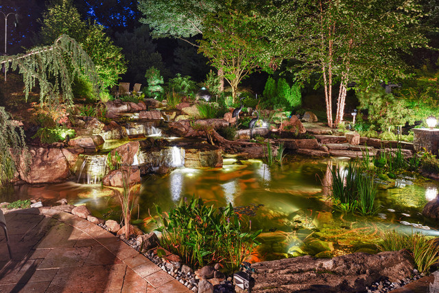 Fish Pond, Ecosystem Pond, Water Garden, In Randolph, NJ