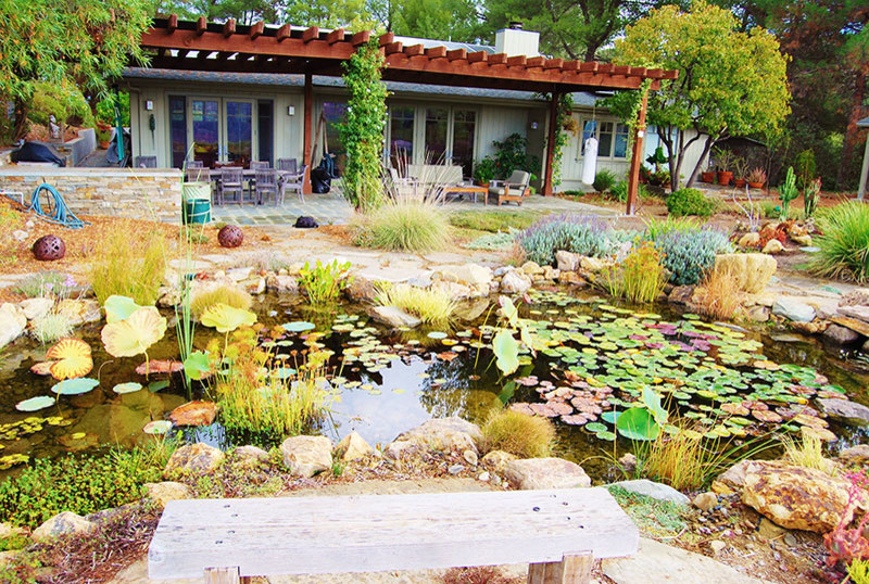 Fish Pond Water Features