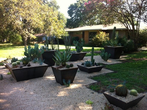 Here we can see a number of interesting raised garden beds of multiple sizes with cacti in them. These punctuate a walkway, creating an interesting and dynamic yard that is sure draw attention.