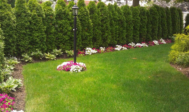 Floral park pool traditional landscape new york by for Large lot landscaping ideas