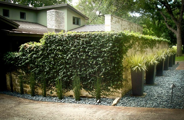 Flower Bed contemporary-landscape
