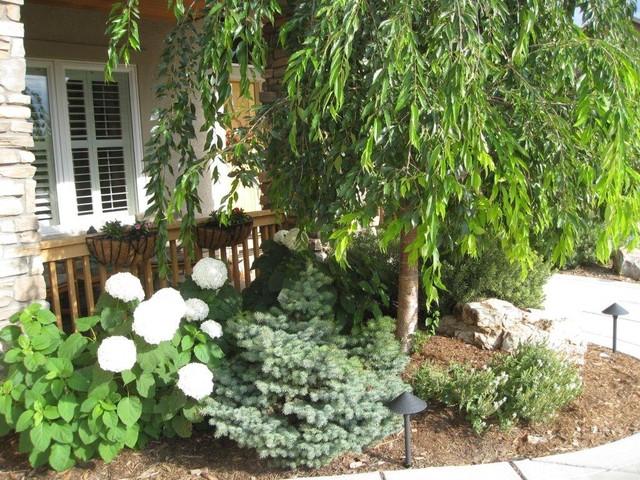 Flower Bed Contemporary Landscape Denver