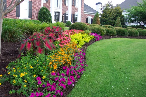 That flower bed what flowers planted can you possible for Colorful front yard landscaping