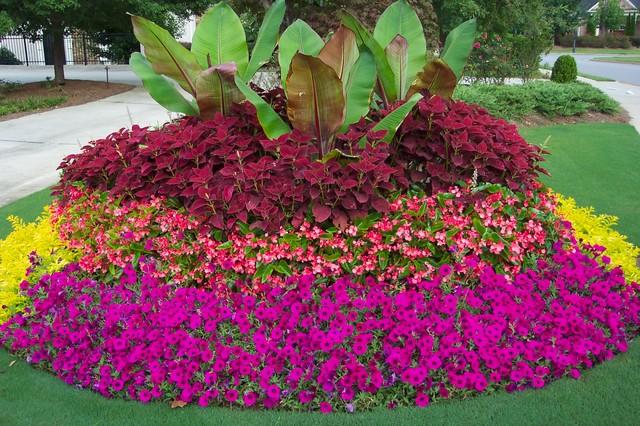 Flower Gardens In The South Landscape, Atlanta
