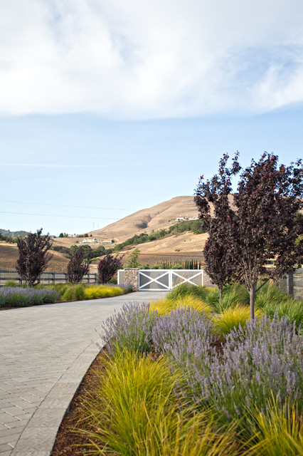 Foothill Residence farmhouse-landscape
