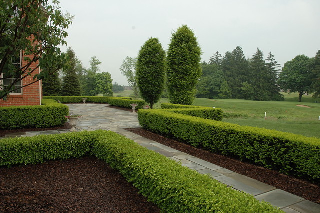 Formal Bluestone Terrace with Boxwood Hedge traditional-landscape
