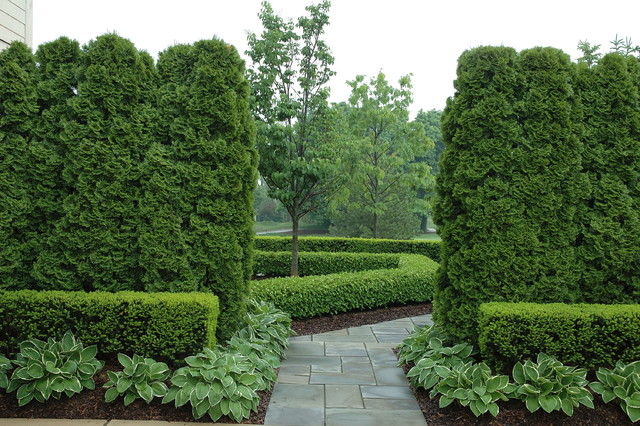 Formal Graden Path With Arborvitae And Boxwood