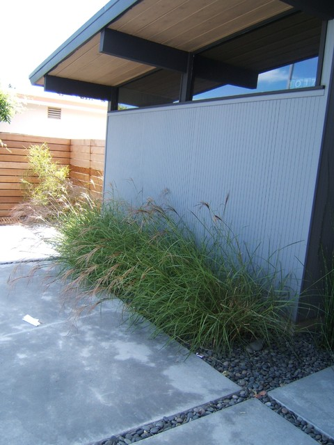 Foster city eichler modern landscape san francisco for Outer space landscape architects adelaide