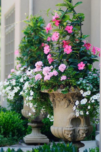 French Country Estate traditional-landscape