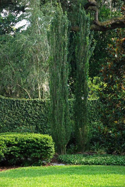 French Country Style Garden - Traditional - Landscape ...