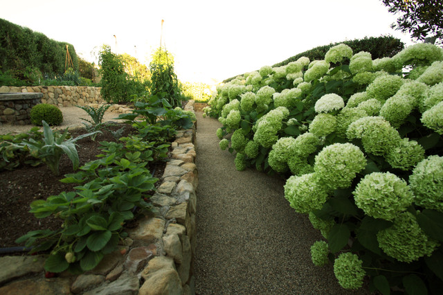 French Vegetable Garden Landscape Los Angeles by