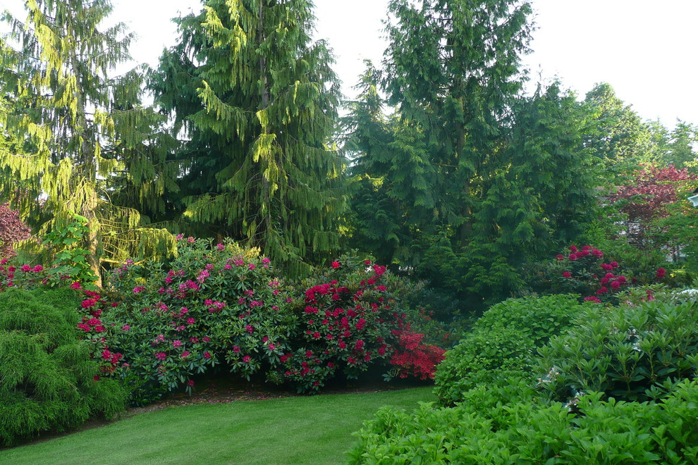 This is an example of a traditional shade backyard landscaping in Vancouver.