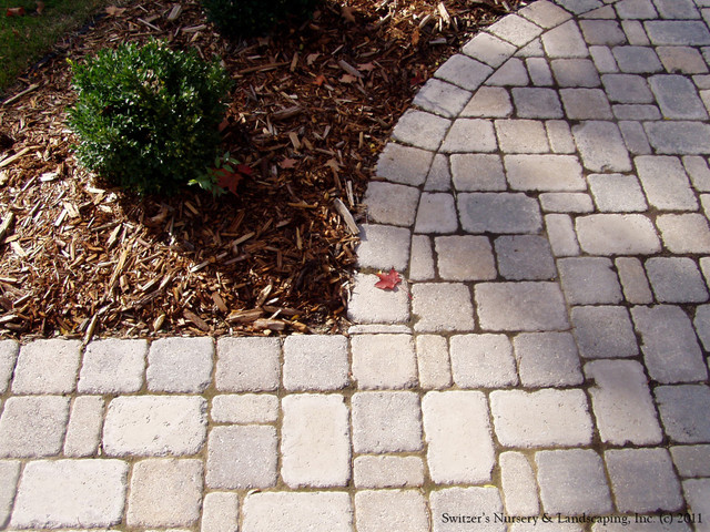 Front Entry Interlocking Paver Patio Walk Traditional Landscape