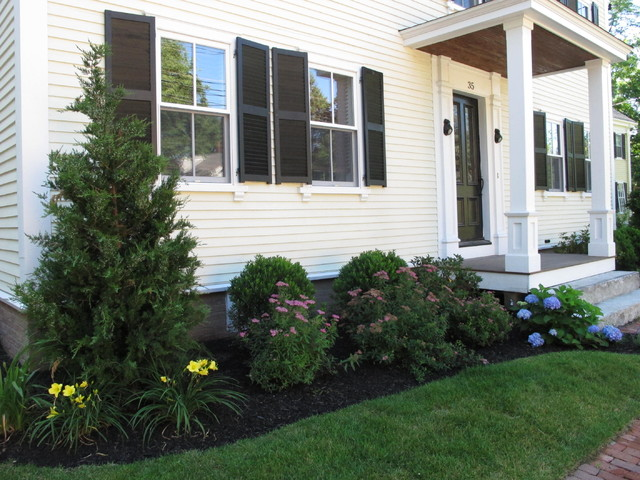 Front foundation planting traditional landscape for Plants for landscaping around house