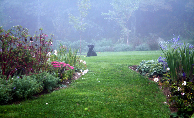 Traditional Landscape by Matthew Cunningham Landscape Design LLC