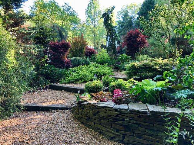 Front Stroll Garden, April 2018. eclectic-landscape