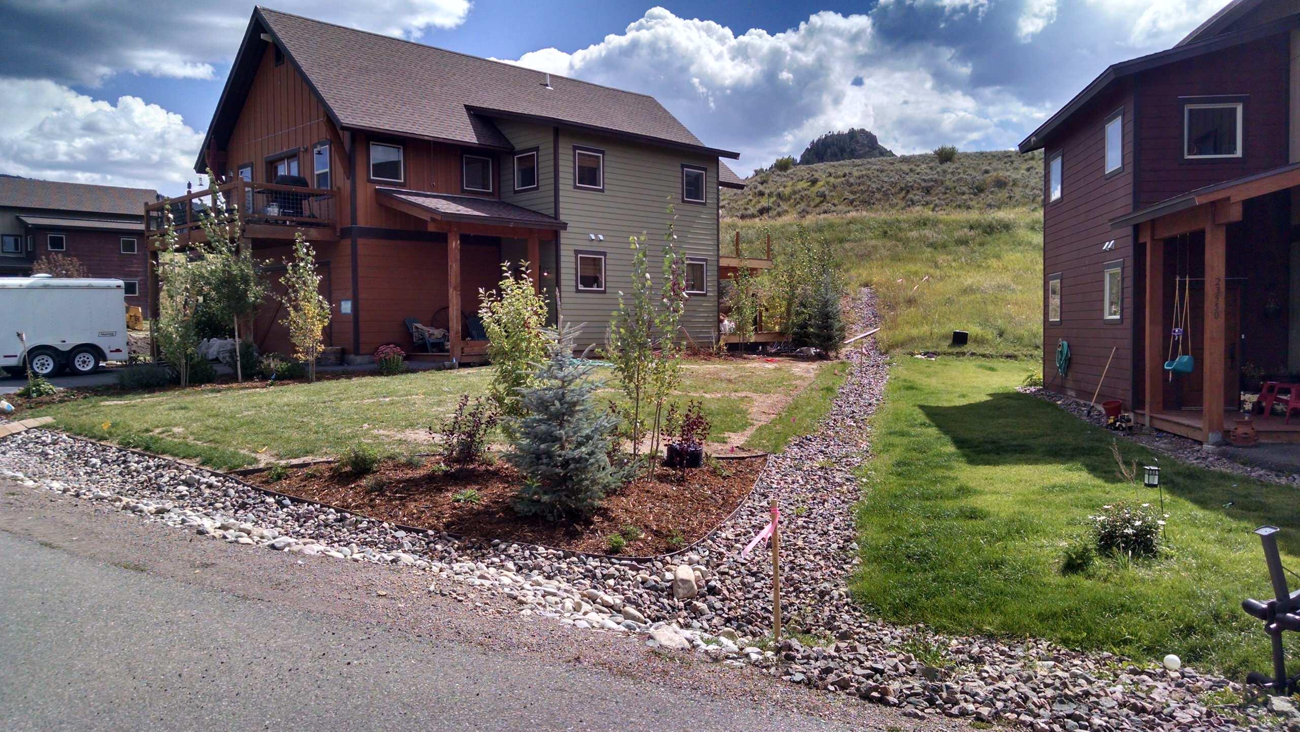 Front yard after hydroseeding