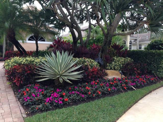 Front Yard Design - Tropical - Landscape - Miami - By Eileen G Designs