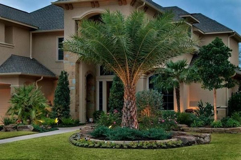 Front Yard Design - Tropical - Landscape - Miami - by ...
