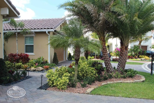 Front Yard Landscape Tropical Miami By