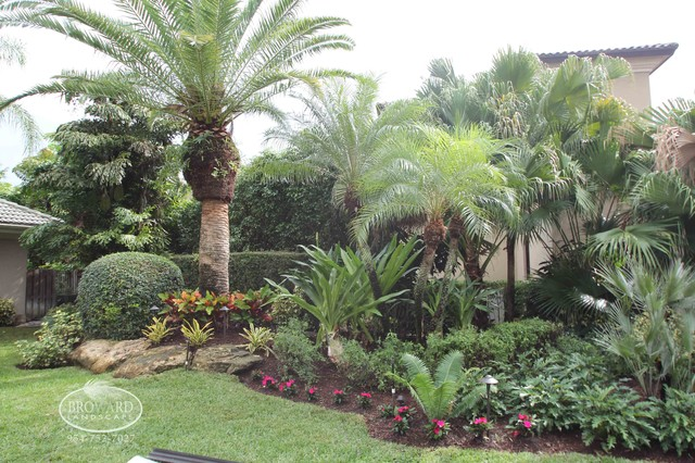 Front yard landscape tropical landscape miami by for Garden design with palms