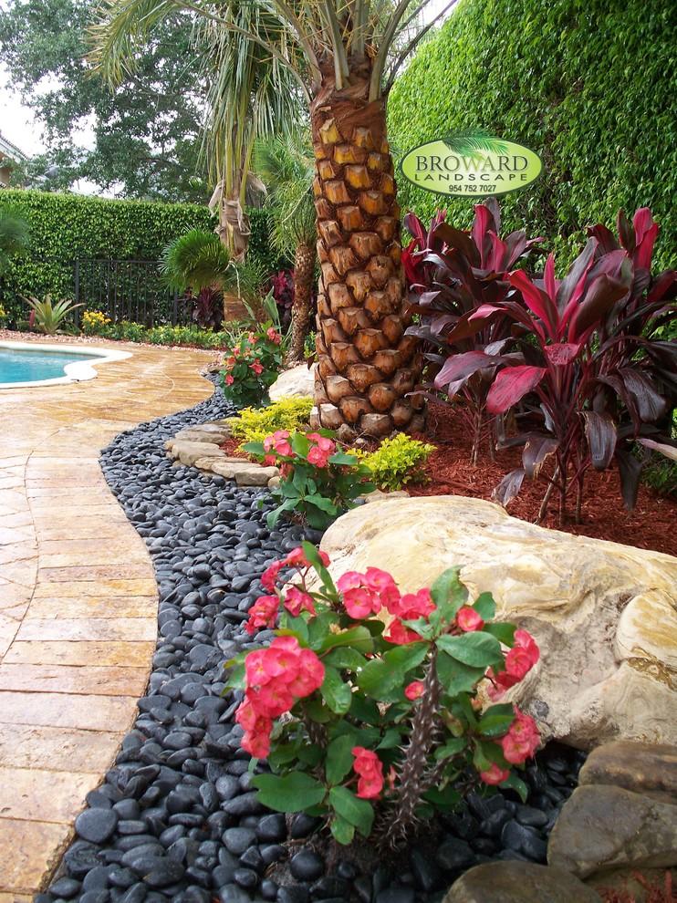 Front Yard Landscape Tropical Landscape Miami By Broward Landscape Inc