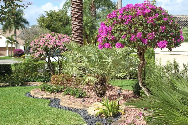 Front yard landscape tropical landscape miami by broward