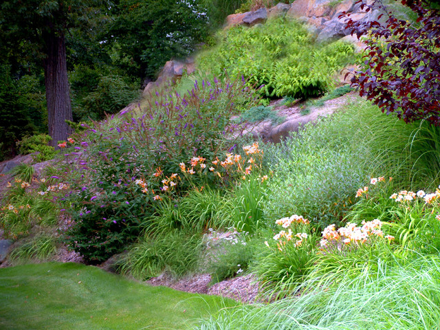 Front Yard Slope Landscaping Ideas Part - 38: Front Yard Landscape Design Eclectic-landscape