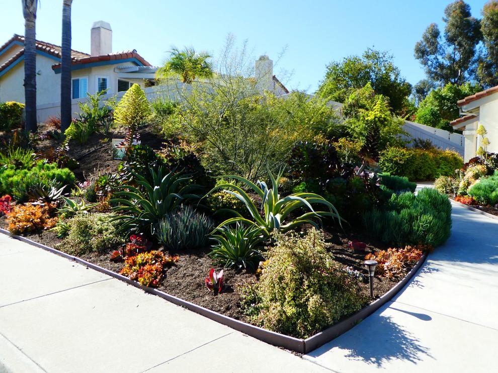 Front Yard Landscape - Tropical - Landscape - San Diego ...