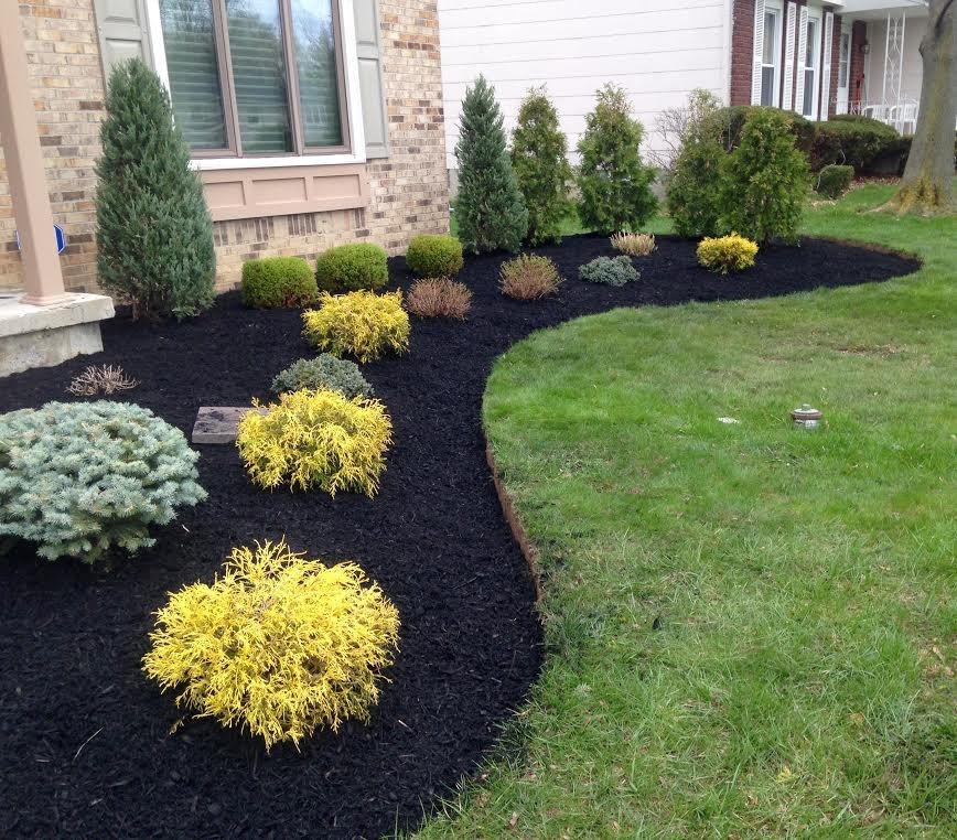 Front Yard Landscape Project In Buffalo