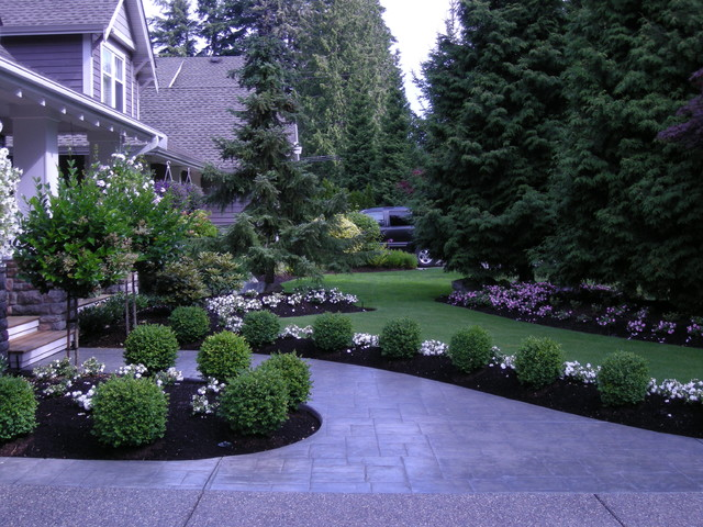 front yard landscaping make over 1 - traditional - landscape - vancouver