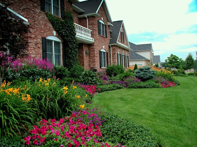 front yard planting ideas traditional landscape new york by