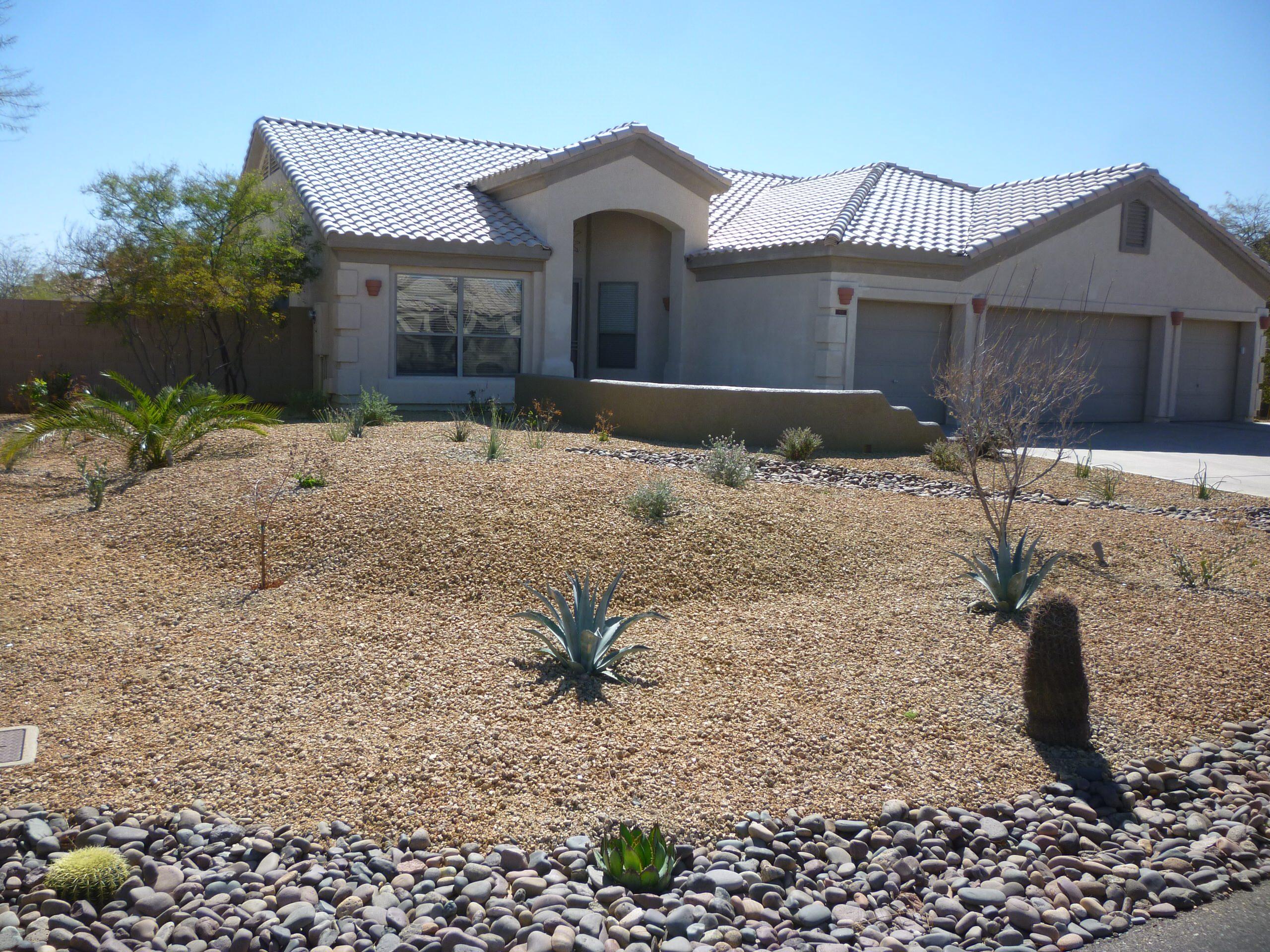 Frontyard Desert Landscape