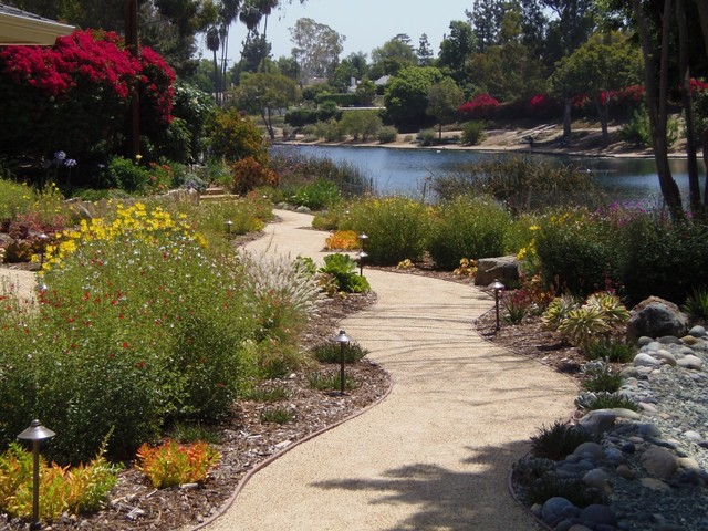 California native low water front yard traditional for Water landscape design