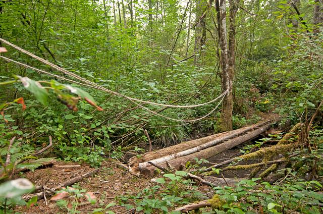 Furwood traditional-landscape