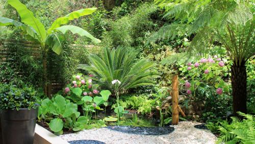 Quelles Plantes Choisir Dans Le Jardin Et Comment Les Marier