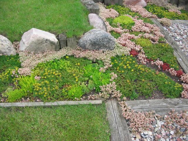 Garden design contemporary-landscape
