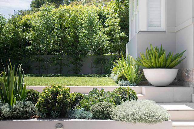 Inner City Backyard Ideas : secret gardens landscape architects designers